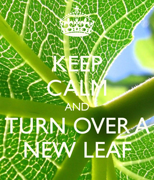 Keep Calm and Turn Over a New Leaf